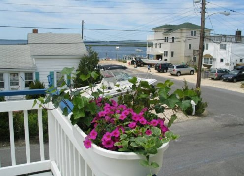 New Jersey Sunflower Cottage by the Bay - Pet Friendly!